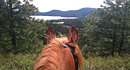 Trail Rides with Grouse Creek Bed & Barn